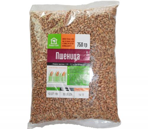 Семена Пшеницы